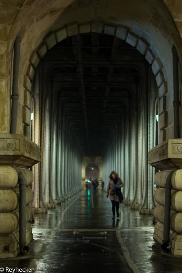 pont-de-bir-hakeim-janvier-2017-2