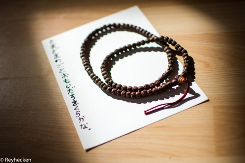 Japan project 22