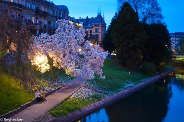 Strasbourg 31032017 16