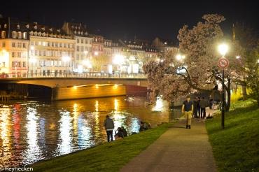 Strasbourg 31032017 24