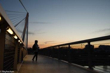 Ponts du Rhin 2018_04_12 OG 104