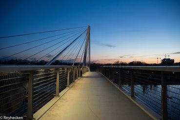 Ponts du Rhin 2018_04_12 OG 113