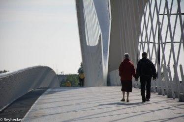 Ponts du Rhin 2018_05_19 OG 60