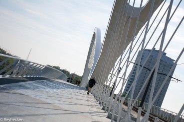 Ponts du Rhin 2018_05_19 OG 63